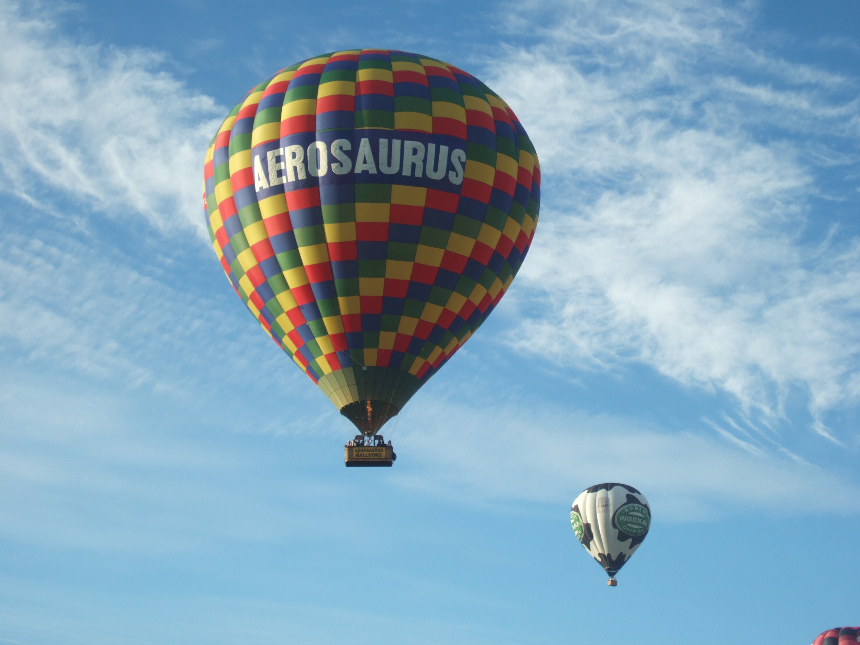 aerosaurus balloon in action